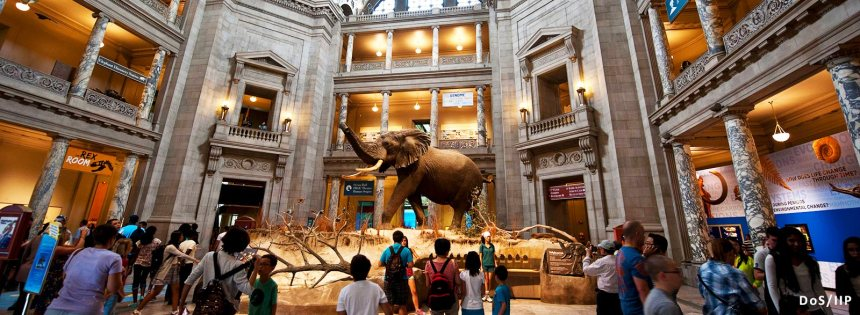 homepage-hero-museums-for-days-henry-the-elephant-smithsonian-museum-natural-history.jpg